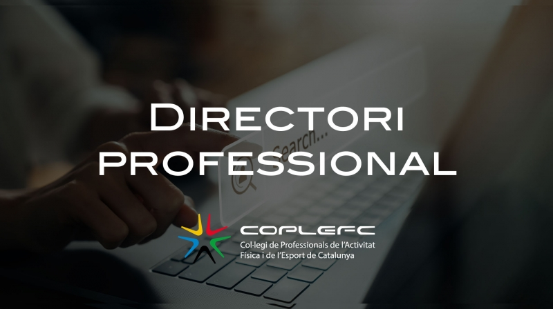 DirectoriProfessional.jpg (148 KB)