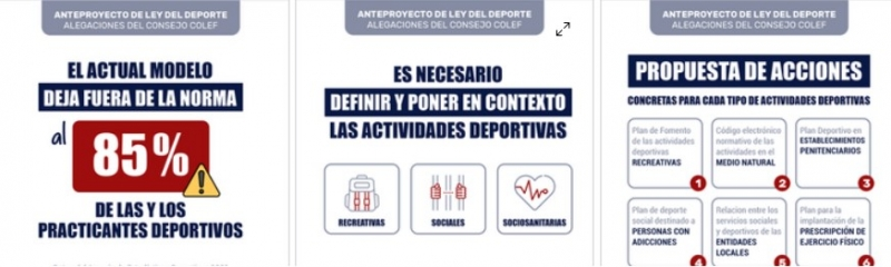LeyDeporte-ConsejoCOLEF-02.jpg (129 KB)